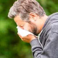 چه عواملی باعث آلرژی پاییز می شود؟