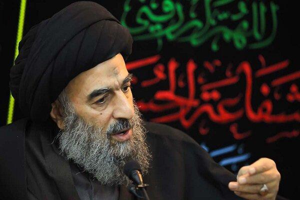 امام حسن (ع) بر اساس درایت و حکمت با دشمن خود صلح کردند