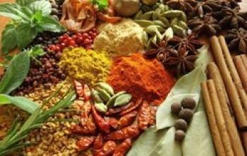 توصیههای طب سنتی برای تقویت سیستم ایمنی بدن در پاییز