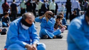 ۲۶۲ مجرم حرفه ای در دام پلیس پایتخت