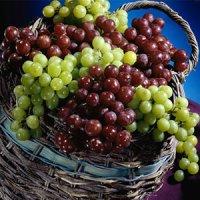 خواص بی نظیر انگور برای بدن