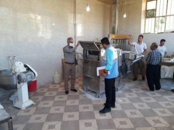 قاچاق نان در کردستان!