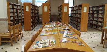۸۰۰ هزار جلد کتاب در کتابخانههای عمومی کردستان وجود دارد
