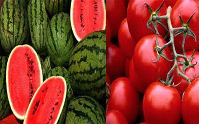 عراق از ایران 100 میلیون دلار گوجه و هندوانه خرید