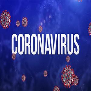 جوانان درصد بالایی از مبتلایان به کووید-۱۹ را تشکیل می دهند