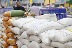 قیمت برنج شکست / توزیع برنج وارداتی آغاز شد