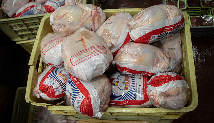 مرغ قیمت ۴۰ هزار تومان را هم دید!