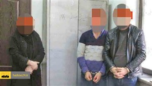 هوشیاری زن ۶۵ ساله دزدان مأمورنما را نقره داغ کرد