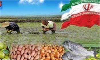 صادرات فلهای محصولات کشاورزی ممنوع شد
