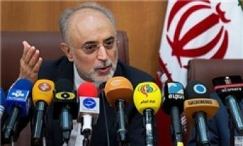 کنایه علی اکبر صالحی به رئیس جمهور