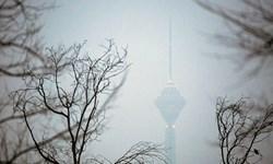 کاسبی جدید با اکسیژن فروشی در هوای آلوده
