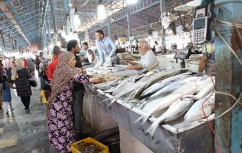 خداحافظی با ماهی شب عید / رشد ۲ برابری قیمت انواع ماهی