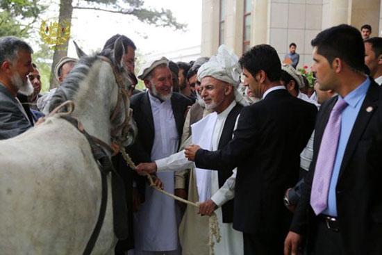 اهدای اسب فرمانده داعش به «اشرف غنی»!+عکس