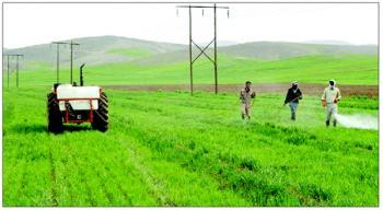 شرایط بازنشستگی کشاورزان اعلام شد