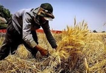 قرائت گزارش نهایی لایحه اشتغالزایی روستایی این هفته در صحن مجلس