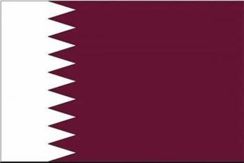 راز قطع روابط دیپلماتیک عربستان با قطر لو رفت/یک مقام اماراتی فاش کرد