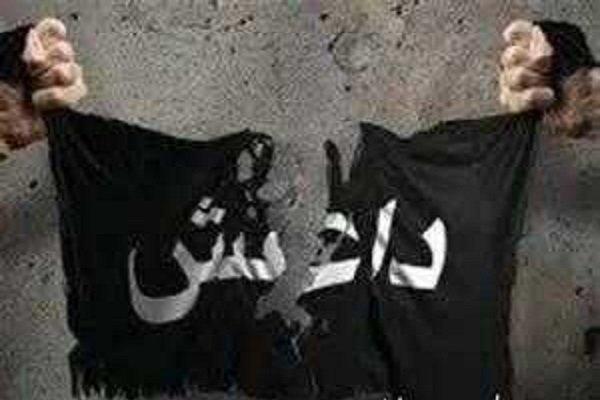 بررسی پرونده های همکاری با داعش در تهران