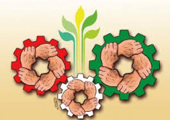 ۲۰ هزار فرصت شغلی در کرمان ایجاد می شود