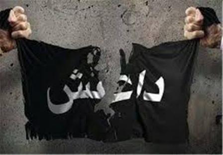 «شیخ علی» به دلیل ارتباط با داعش توسط اطلاعات دستگیر شد