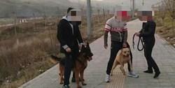 گفتگو با پدر صاحب سگِ خطرناک لواسان