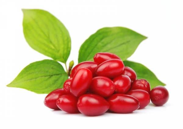 اگر مشکلات حل نشدنی کلیه دارید تا فصل این میوه تمام نشده مصرف کنید