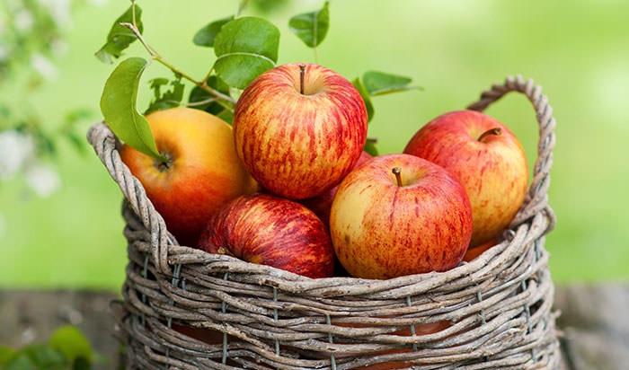 این میوه را روزی یک عدد منظم بخورید و تا پایان عمر دکتر نروید