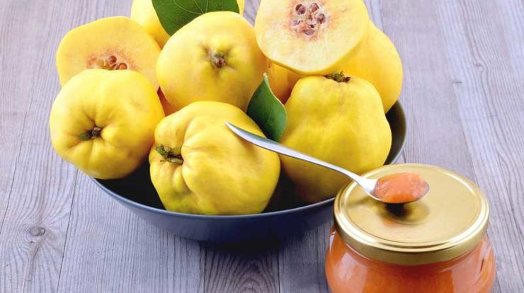 ام الامراض بدن خود را با این میوه پاییزی از بین ببرید+عکس