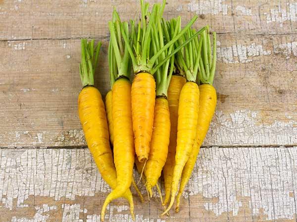 تا فصل این هویج ویژه ایرانی تمام نشده با آن 12 بیماری و سرطان را ریشه کن کنید