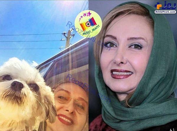 عکس/سلفی خانم بازیگر با سگ عجیبش در ماشین
