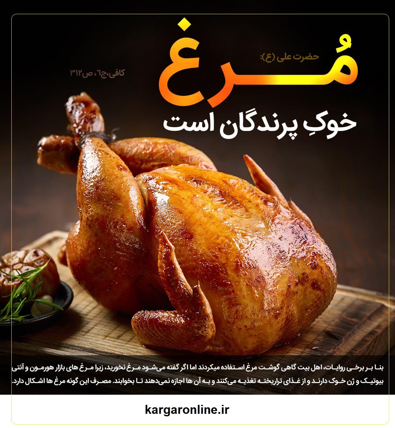 چرا مرغ به خوک پرندگان شهرت دارد+پاسخ در روایات و طب اسلامی