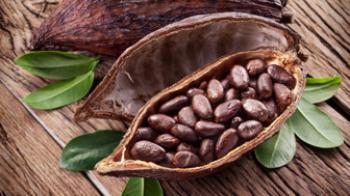 هزار و یک خاصیت کاکائو؛ از پایان فشار خون و تنظیم کلسترول و خواص ضد افسردگی و تقویت قلب