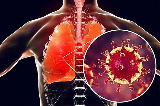 ویروس کرونا با بدن چه می کند؟ /  بزرگترین خطر این ویروس