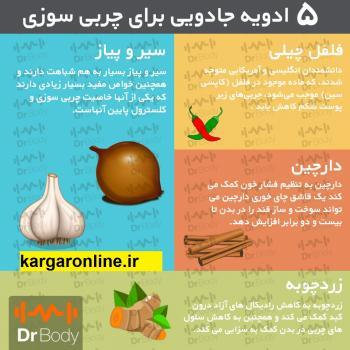 ادویه های چربی سوز را روزانه مصرف کنید و ارگانیک لاغر شوید+عکس