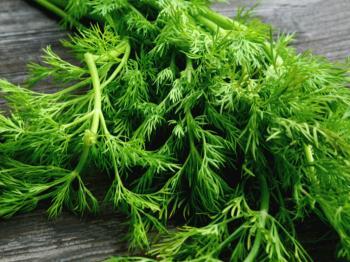 سبزی قاتل فشار، چربی و قند خون / تقویت معده، کبد ، طحال، سنگ کلیه و مثانه را بشناسید