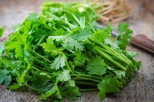 مزایای سبزی معروف به گیاه مقدس/از درمان کم خونی ، کبد و مشکلات کلیه تا تنظیم سطح کلسترول