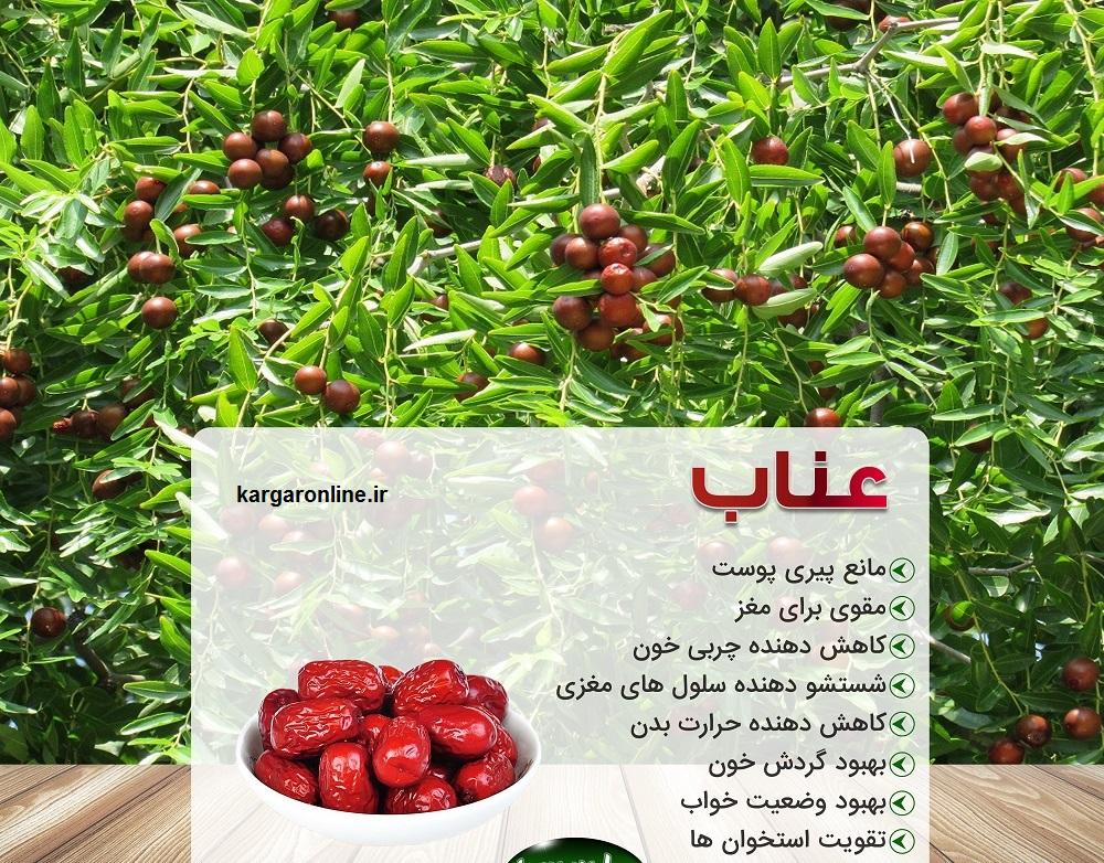 میوه ای که هم زمان کبد ، گوارش ، فشار ، قند خون و افسردگی رادرمان میکند