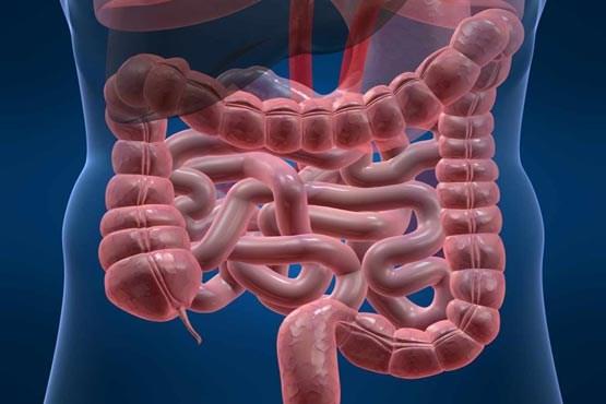 چرا یبوست به «امالامراض» معروف است/ روشهای درمان یبوست