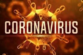 یافته جدید محققان؛ ریزش مو در بازماندگان کرونا ویروس