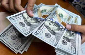علت افزایش قیمت دلار لو رفت