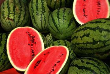 چرا هندوانه گران شد؟