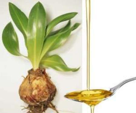 قاتل ریزش مو این گیاه چند هزار ساله است/ هر جا استعمال شود مو می روید+رشد سریع مژه در بانوان