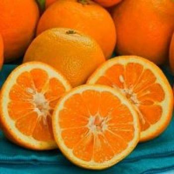 فوایدی بی شمار از دل نارنجی شگفت انگیز